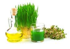 与发芽的麦子和麦芽油的Wheatgrass汁液 库存照片