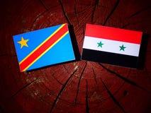 与叙利亚旗子的刚果民主共和国旗子在树 免版税库存图片
