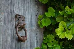 与古色古香的敲门人的土气门与常春藤在背景中 图库摄影