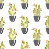 与古色古香的花瓶绿色植物背景装饰罐设计经典瓦器容器传染媒介的无缝的样式 图库摄影