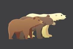 与另外动画片的汇集涉及黑暗的背景 传染媒介broun和黑美国熊 设置野生生物 库存例证