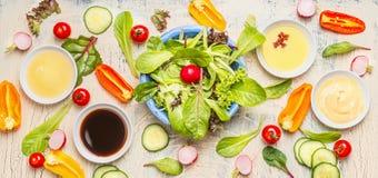 与可口菜成份、选矿和莴苣的新鲜的素食沙拉为健康吃或饮食离开 免版税库存照片