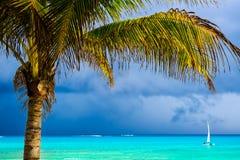 与可可椰子树和明白蓝色海的加勒比海滩 Pla 免版税图库摄影