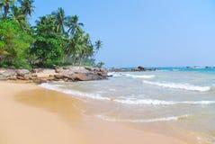 与可可椰子树的海滩 免版税库存照片