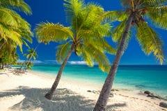 与可可椰子树的离开的海滩在斐济 免版税库存照片
