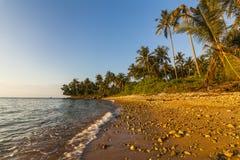 与可可椰子的美丽的热带海滩 酸值张 免版税库存图片