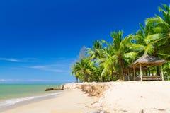 与可可椰子结构树的美丽的热带海滩 库存照片