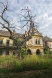 与可怕树的老被放弃的中世纪城堡在前面 图库摄影