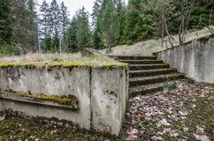 与台阶的长得太大的入口 免版税库存照片