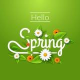 与叶子、春黄菊和花的新鲜的春天背景海报 你好春天 皇族释放例证
