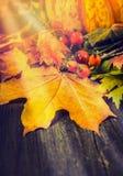 与叶子、狂放的臀部和南瓜的秋天静物画在土气木背景 免版税库存照片