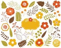 与叶子、花、莓果和框架的传染媒介秋天花卉集合 传染媒介秋叶和花 传染媒介秋天 免版税库存照片