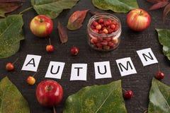 与叶子、苹果和标志的秋天构成 库存照片