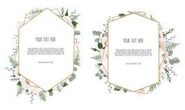 与叶子和几何框架的卡片 花卉海报 向量例证