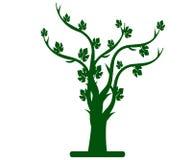 与叶子和分支的绿色树 免版税库存图片
