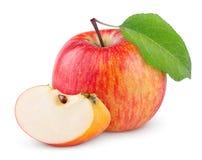 与叶子和切片的红色黄色苹果 库存照片