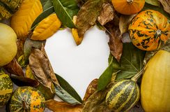 与叶子和南瓜的万圣夜背景 免版税图库摄影