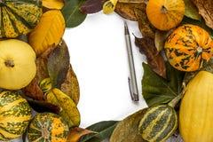与叶子和南瓜的万圣夜背景 库存图片