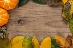 与叶子和南瓜的万圣夜背景 免版税库存图片