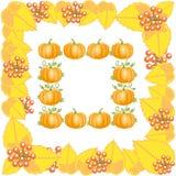 与叶子和南瓜的秋天框架 免版税库存图片