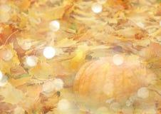 与叶子和南瓜的风格化秋天背景在金黄口气 免版税库存图片