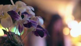 与叶子和可爱的紫色兰花的热带装饰 影视素材