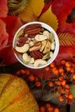 与叶子和坚果的秋天五颜六色的静物画 免版税库存图片