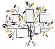 与叶子和框架的被隔绝的花卉树为 免版税图库摄影