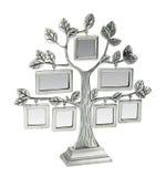 与叶子和框架的被隔绝的银色花卉树 免版税库存照片