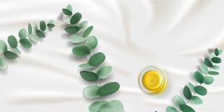 与叶子和油的玉树分支在碗 免版税库存照片
