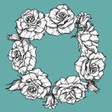 与叶子和玫瑰的逗人喜爱的花圈 免版税库存图片