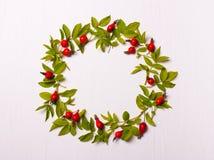 与叶子和红色花,莓果的圆的框架 顶视图 库存图片