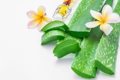 与叶子和花的新芦荟维拉切片在白色背景 免版税库存照片