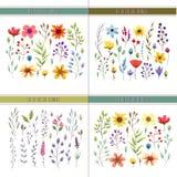 与叶子和花的花卉水彩收藏 婚礼汇集 免版税库存图片