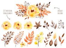 与叶子和花,画的水彩的五颜六色的黄色花卉收藏 免版税库存图片
