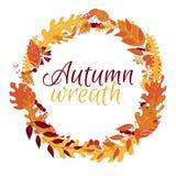 与叶子和莓果的秋天花圈在白色背景 免版税库存照片