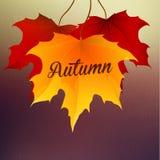 与叶子和雨的秋天背景 免版税库存图片