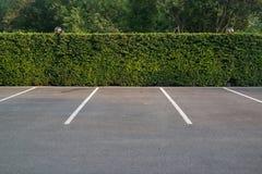 与叶子墙壁的空的停车场在背景中 免版税图库摄影