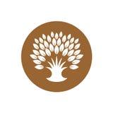与叶子富有的冠的风格化树商标  免版税图库摄影