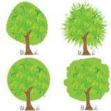 与叶子收获的黄色洋梨树 免版税图库摄影