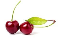 与叶子特写镜头的两棵樱桃在白色背景 库存图片