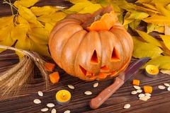 与叶子的一个大秋天万圣夜南瓜在木背景 日历概念日期冷面万圣节愉快的藏品微型收割机说大镰刀身分 库存照片
