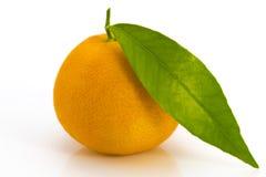 与叶子的一个蜜桔在白色 免版税库存照片