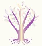 与叶子的一棵美丽的树 免版税库存照片