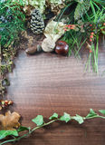 与叶子的五颜六色的秋天,杉木锥体,栗子,坚果 免版税库存图片