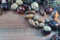 与叶子的五颜六色的秋天,杉木锥体,栗子,坚果 免版税库存照片