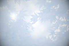 与叶子的哀悼的背景在灰色树荫下  免版税库存图片