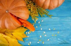 与叶子的大鲜美秋天南瓜在蓝色背景 在倾吐的餐馆沙拉的主厨概念食物新鲜的厨房油橄榄 免版税库存照片