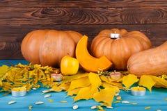 与叶子的大鲜美秋天南瓜在蓝色背景 在倾吐的餐馆沙拉的主厨概念食物新鲜的厨房油橄榄 免版税库存图片