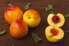 与叶子的成熟油桃 库存图片